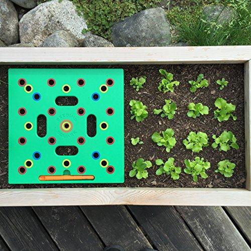seeding square.jpg