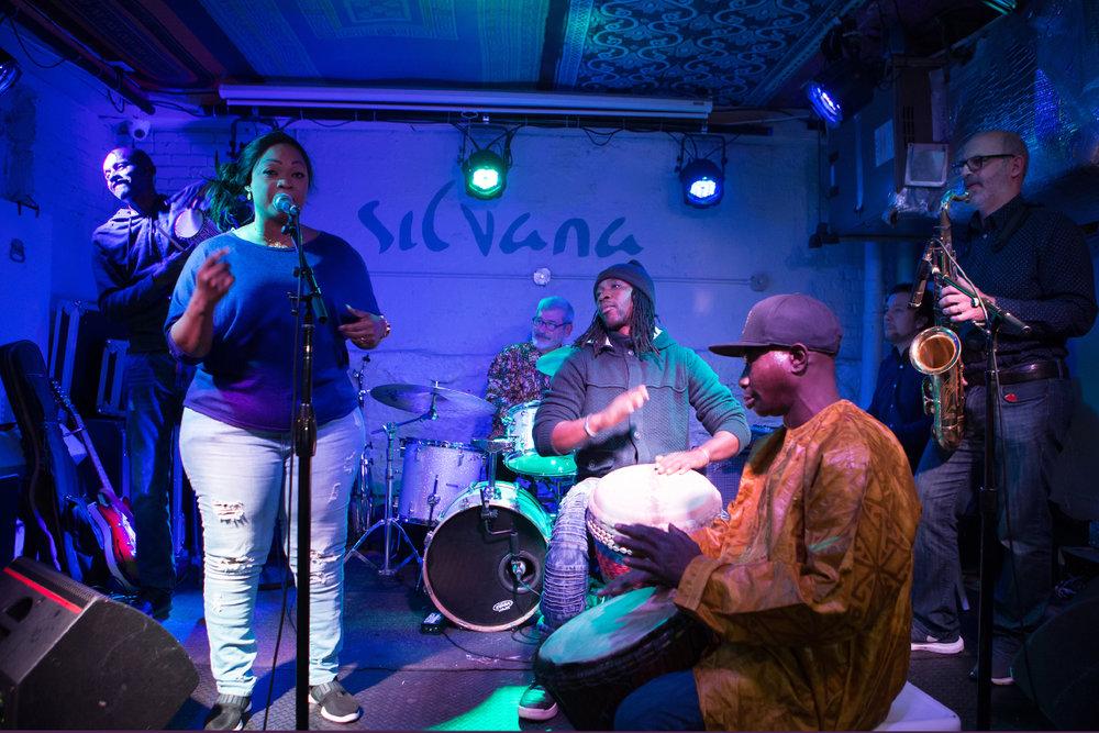 (L-R) Cheickne Bengue Sissoko, Yah Kouyate, Charles Caldarola drums, Mamadou Konate djembe, Makane Kouyate djembe, and Marco Chelo sax.
