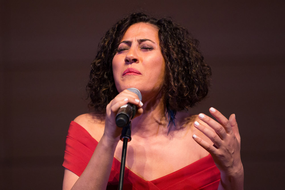 Kurdish vocalist and composer Aynur performing September 30th at the New School in New ork.