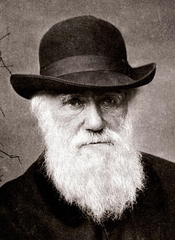 Charles_Darwin_1880.jpg