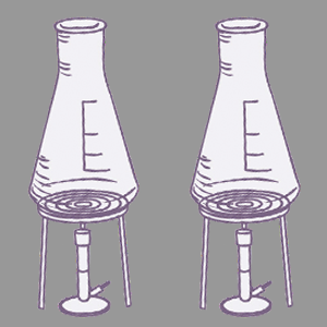bunsen flask grey.png