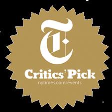 NYT-critics-pic.png