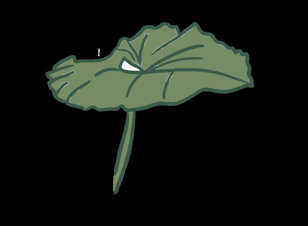 leaf8-01.png