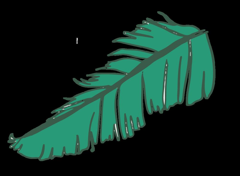 leaf4-01.png
