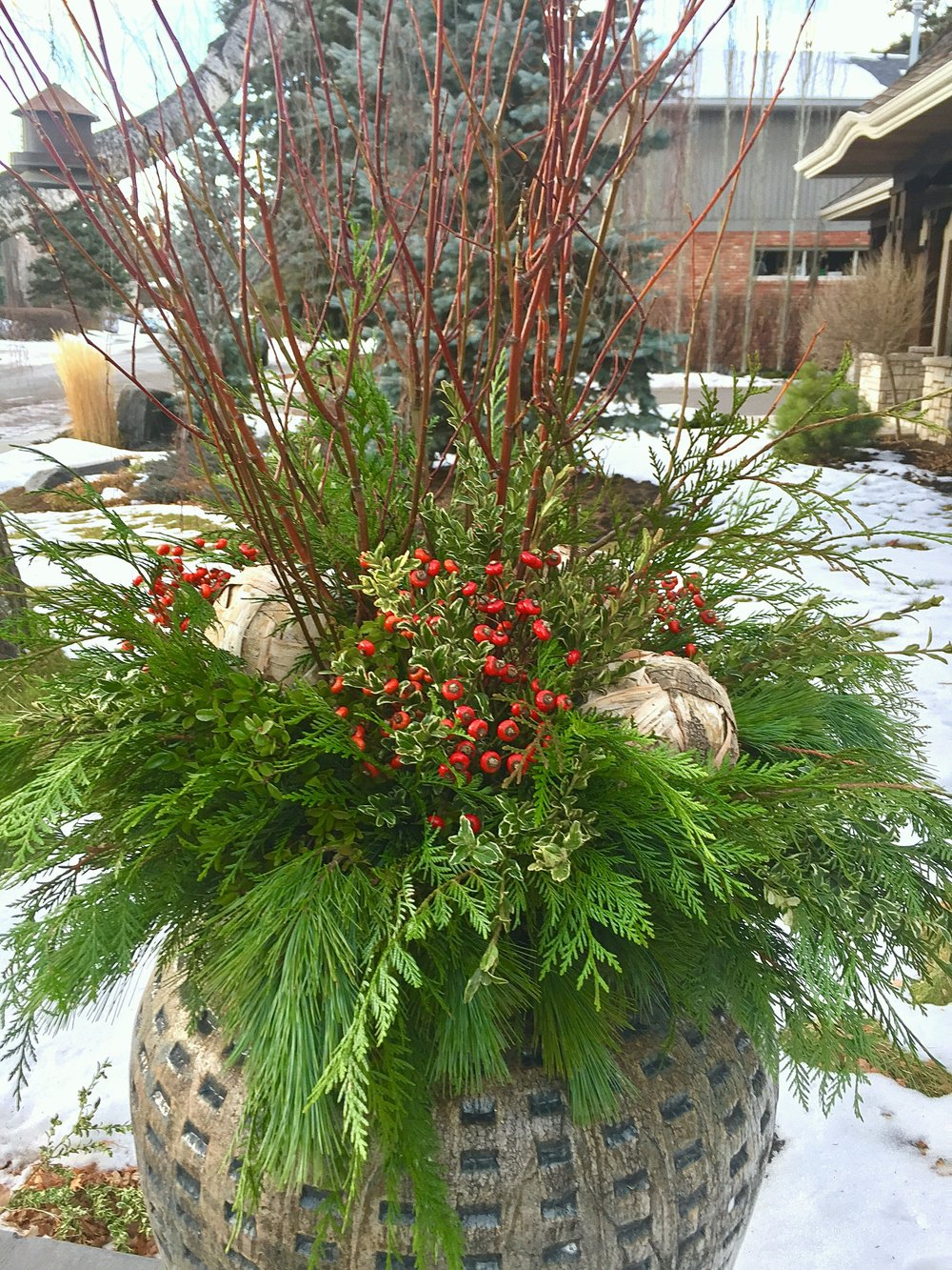 winter container3.JPG