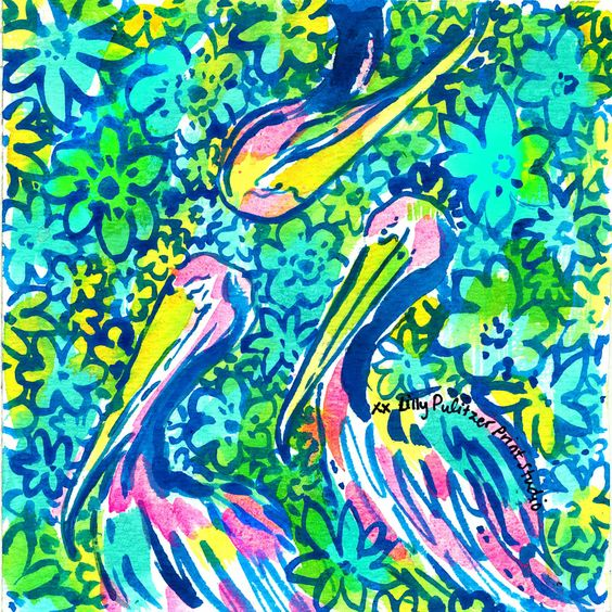 Lilly 5x5 - Pelicans