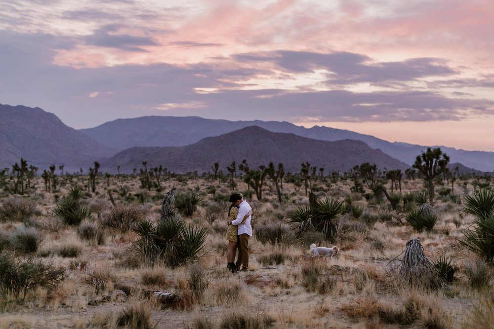 JANNIE AND RICKY / JOSHUA TREE ENGAGEMENT