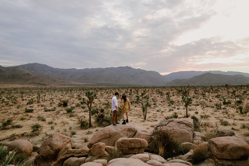 Joshua Tree Engagement shoot_0008.jpg