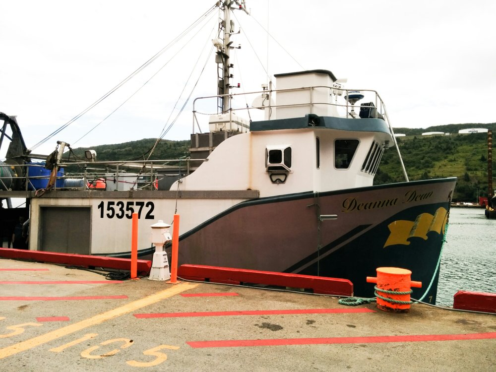 The  Deanna Dean  tied up in St. John's harbour, August 2014