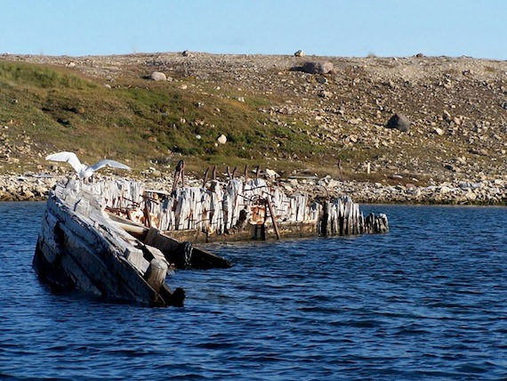 The  Maud , in Cambridge Bay.