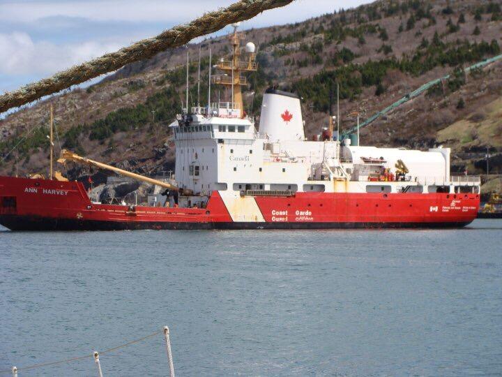 Ann Harvey  doing drills in St. John's Harbour. Photo by Heather Elliott.
