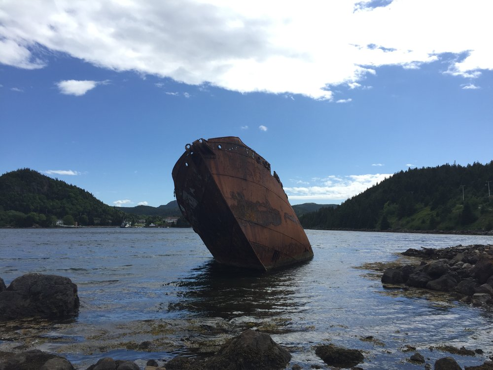 The  Charcot  on the shores of Conception Harbour, July 2016