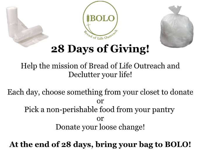 28 Days of Giving.PNG