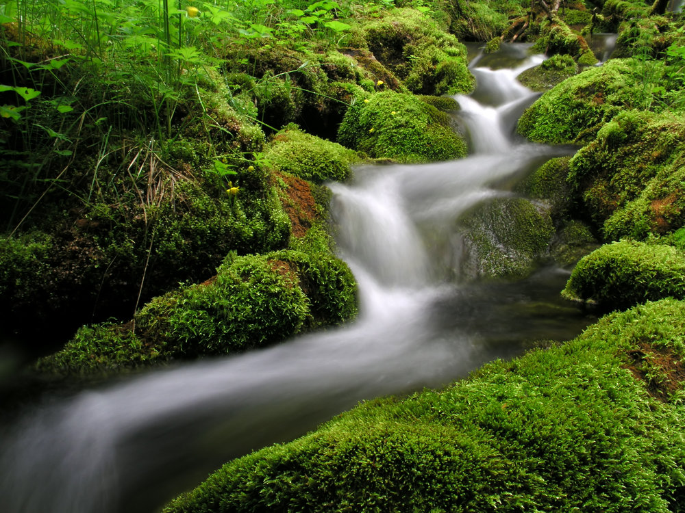bigstock-Flowing-water-of-mountain-stre-27621929.jpg