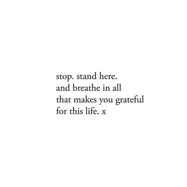 This . . . . . . . . #happythanksgivng #gratitudeeveryday @iamhertribe