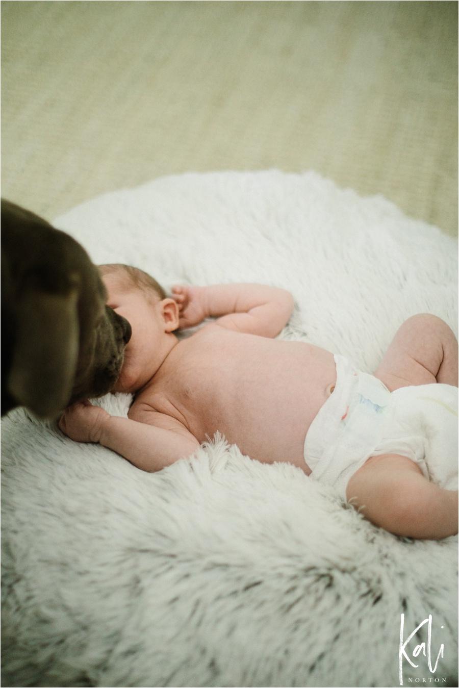 Baton Rouge Newborn Photographer