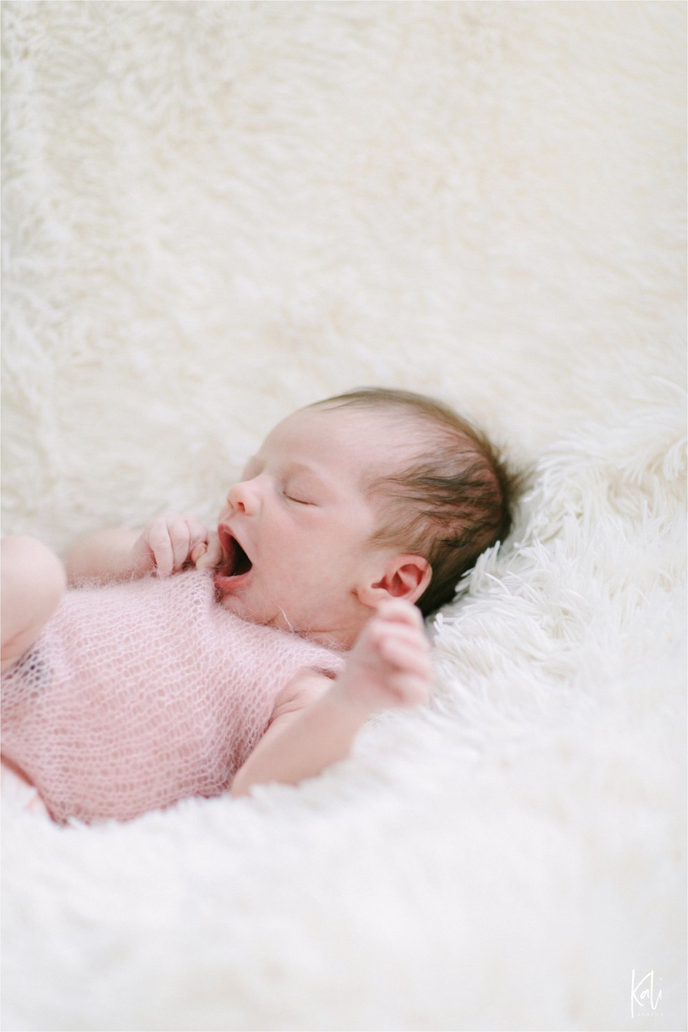 New Orleans Newborn Photography