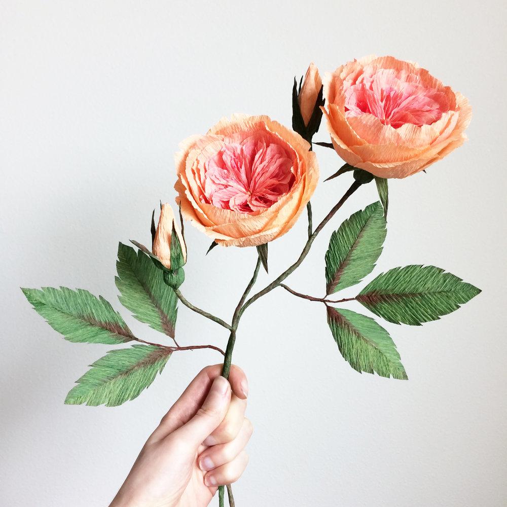 Paper Flowers Zoe Vartanian