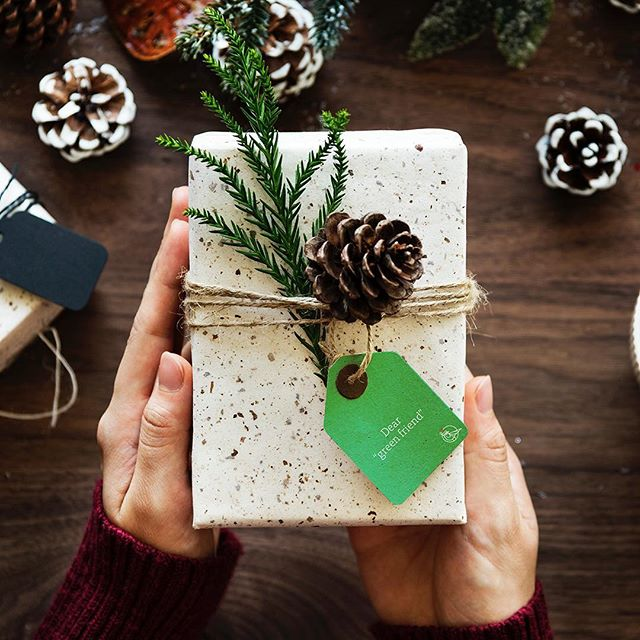 All you need is... #GreenHolidays Check for special offers on our website . . . . #holidays #holidaysales #holidaygift #accesories #musthave #design #giftideas #cannabis #weed #specialoffers
