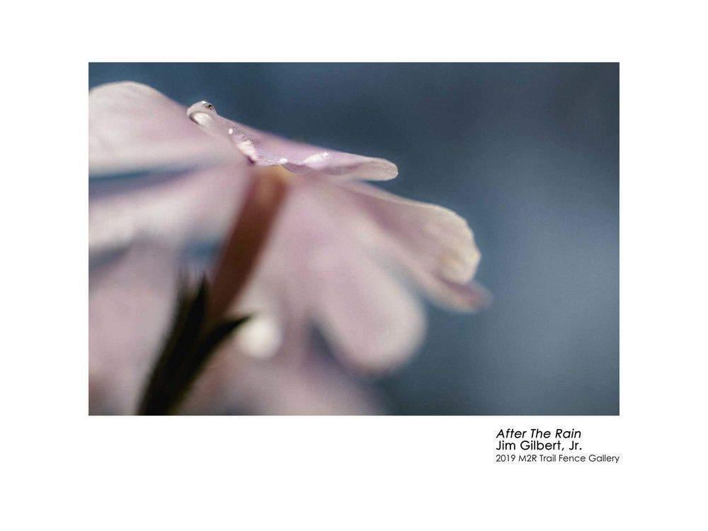 Jim_Gilbert_Jr-After_The_Rain.jpg