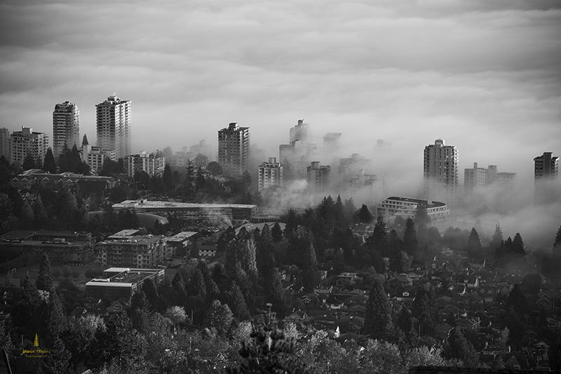 FOG_VANCOUVER_OCTOBER_2013_508_4web