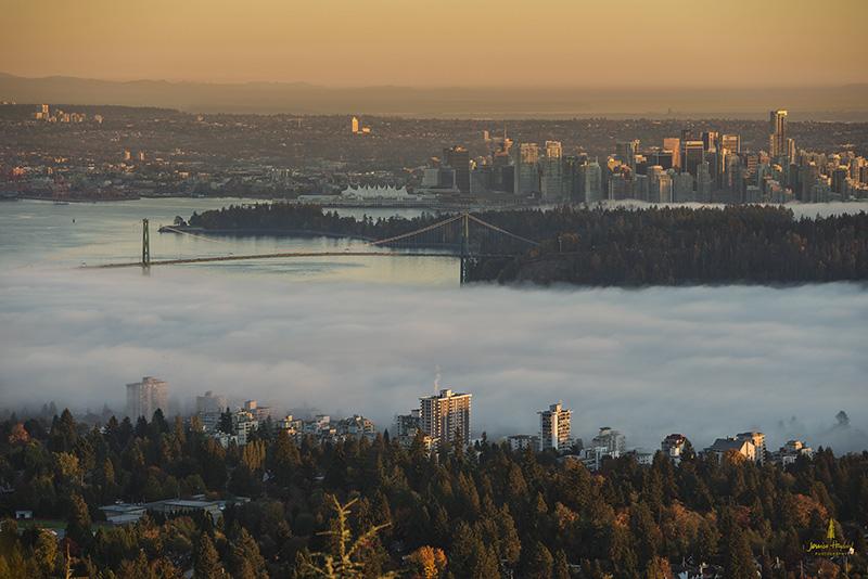 FOG_VANCOUVER_OCTOBER_2013_561_2web