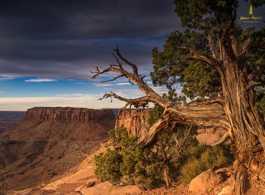 Moab_Tour_2014_Day2_3web