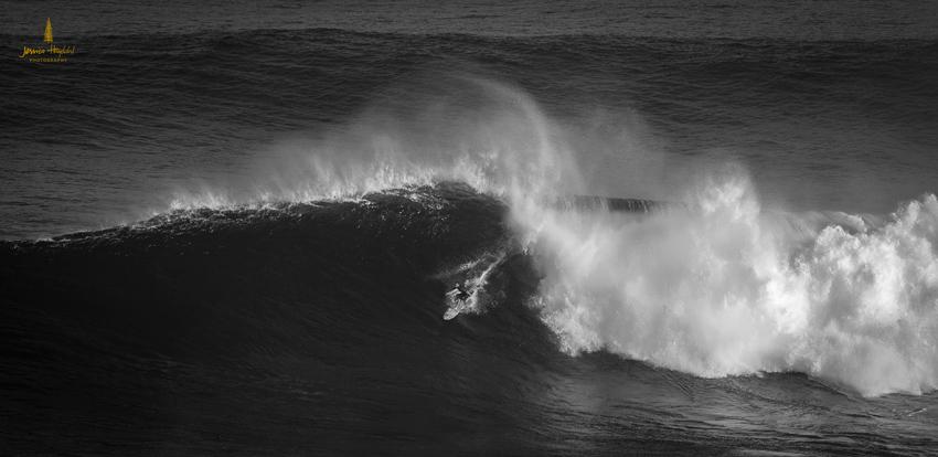 Jaws_2014_10web