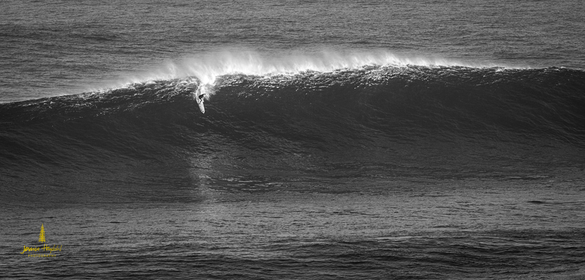 Jaws_2014_28web