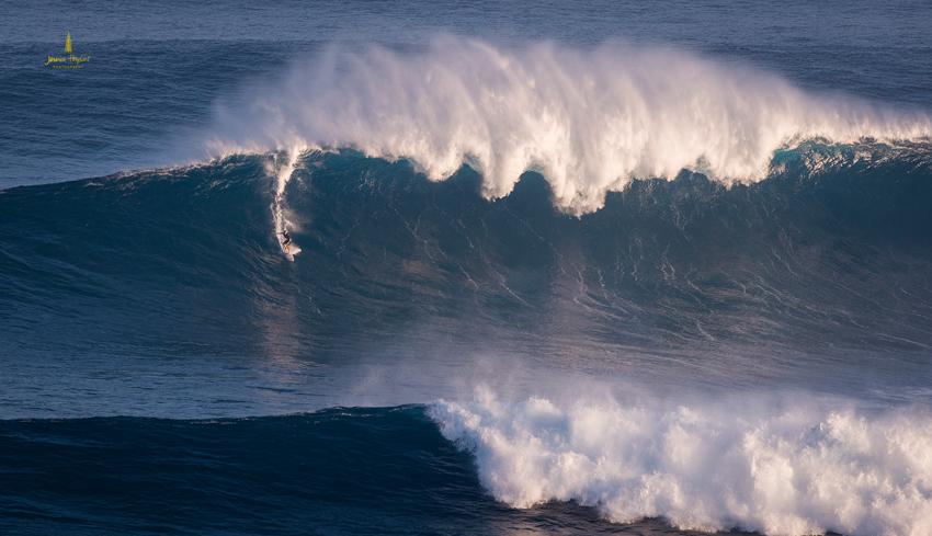 Jaws_2014_36web