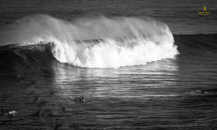 Jaws_2014_37web