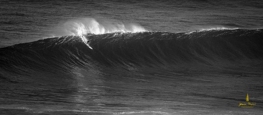 Jaws_2014_39web