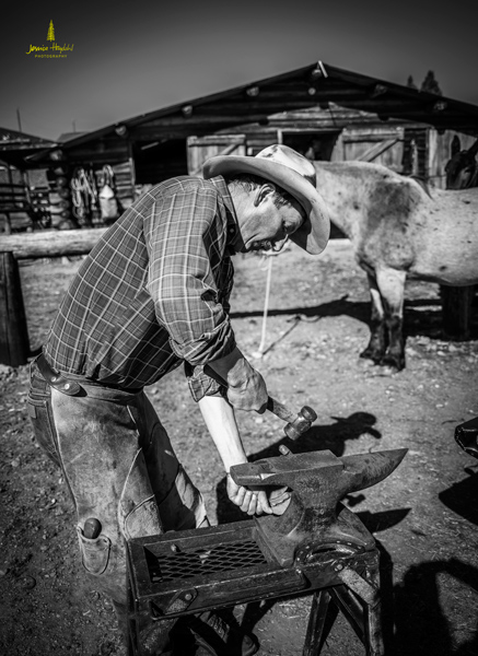salmon_idaho_shoeing_2015_20web