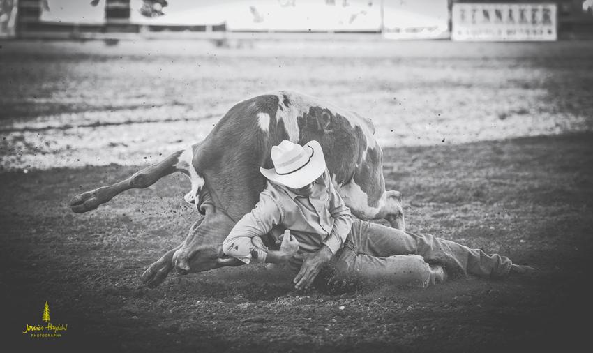 senior_pro_rodeo_2015_16web