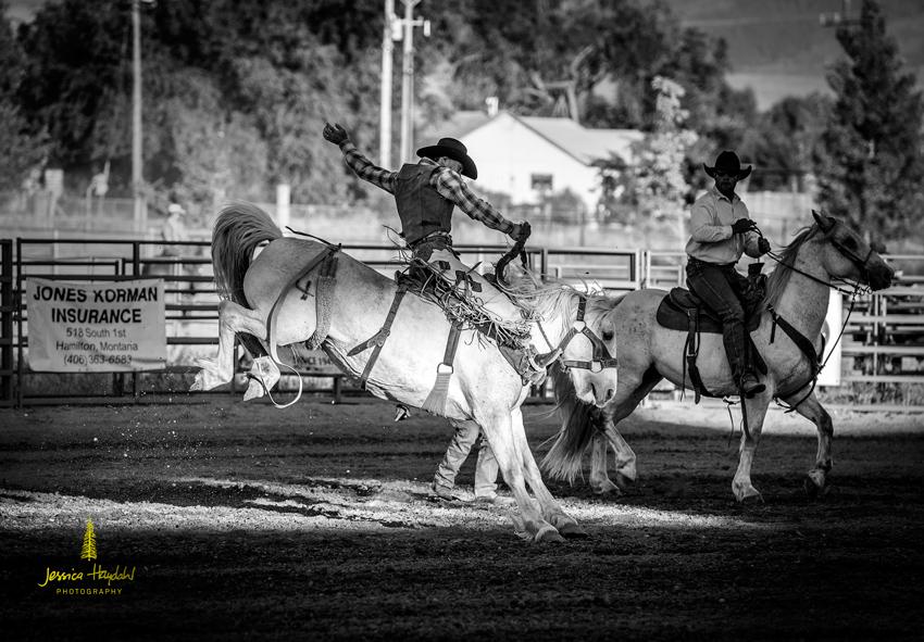 senior_pro_rodeo_2015_1web
