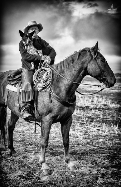 barDNorth_cattle_drive_2015_18web