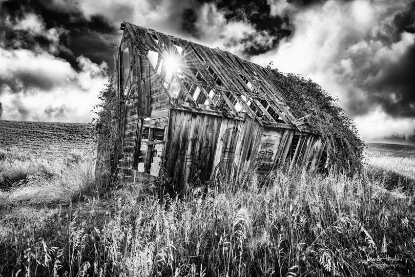idaho_barn_2015_3web