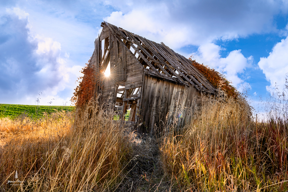 old_barn_Idaho_2web