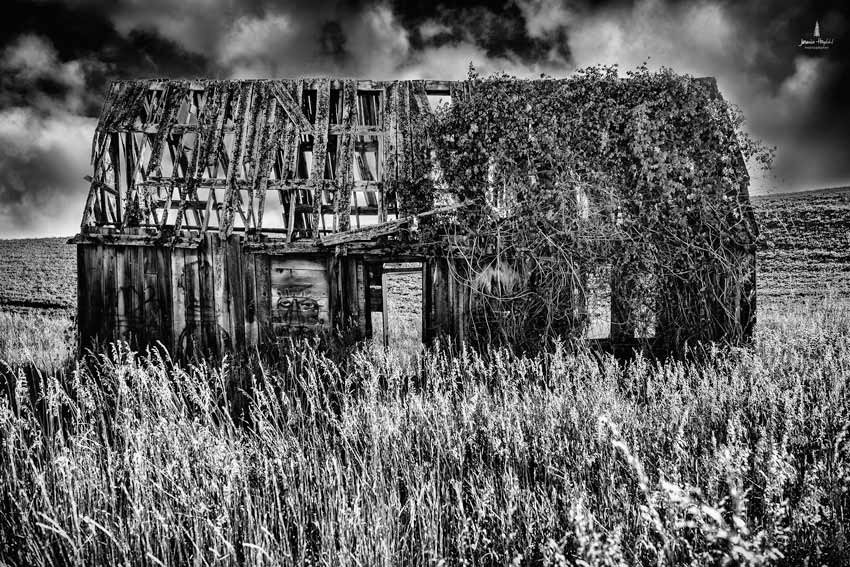 old_barn_Idaho_3web