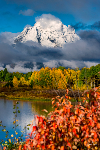 oxbow_bend_fog_3web