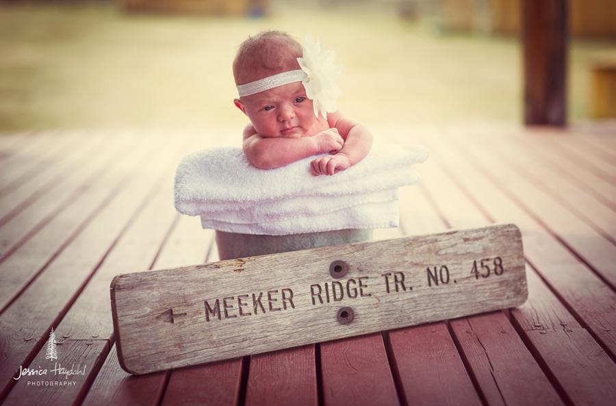 Meeker_Wisdom_2015_1web