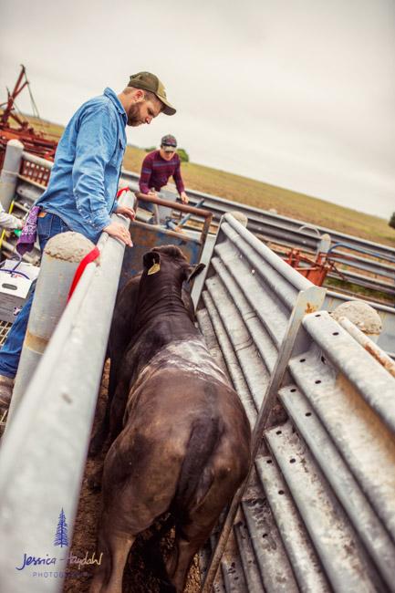 ranch_life_32