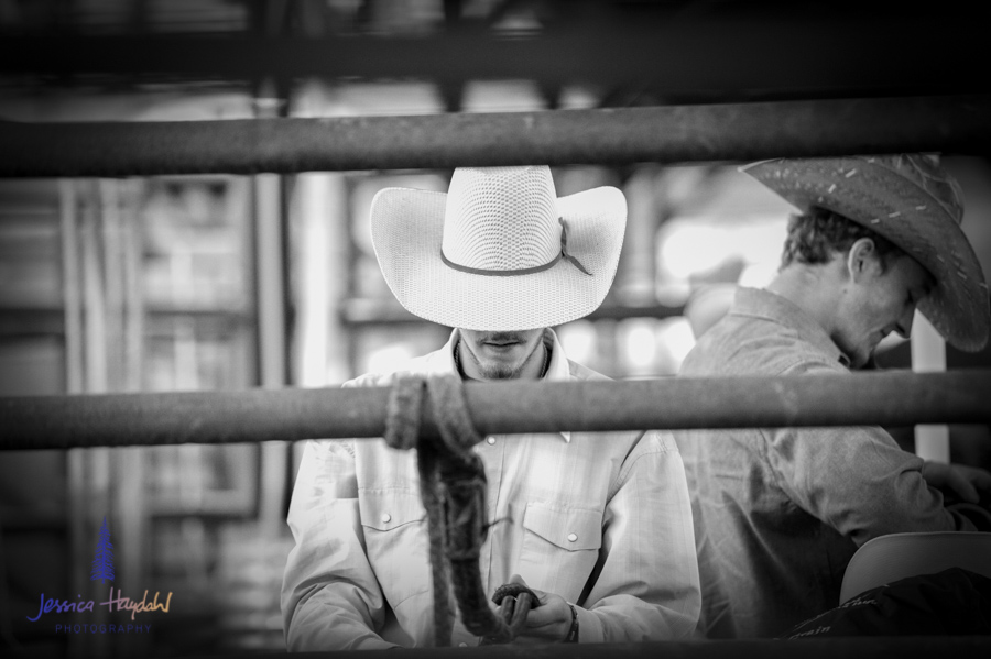 Bullarama_Richardson_2016_web-1