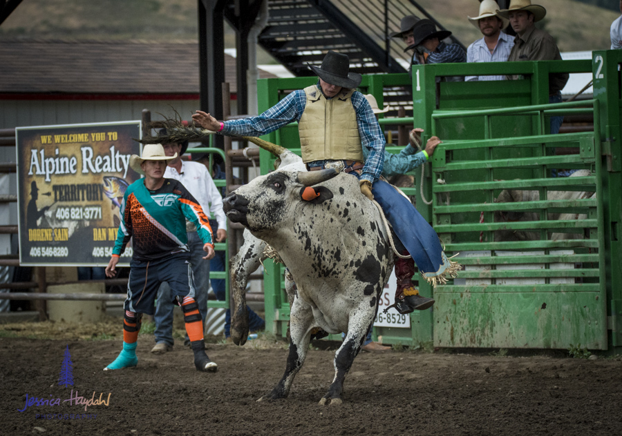 Bullarama_Richardson_2016_web-33