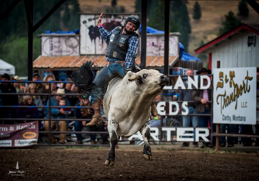 darby_rodeo_2016webweb