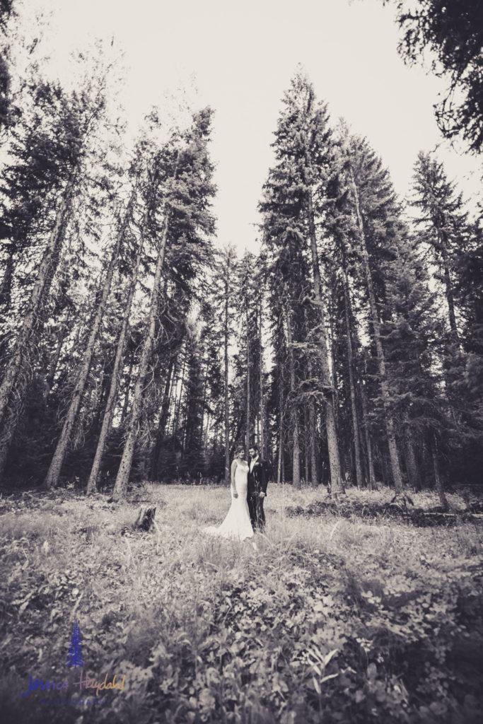 brooke_jake_wedding_web-58