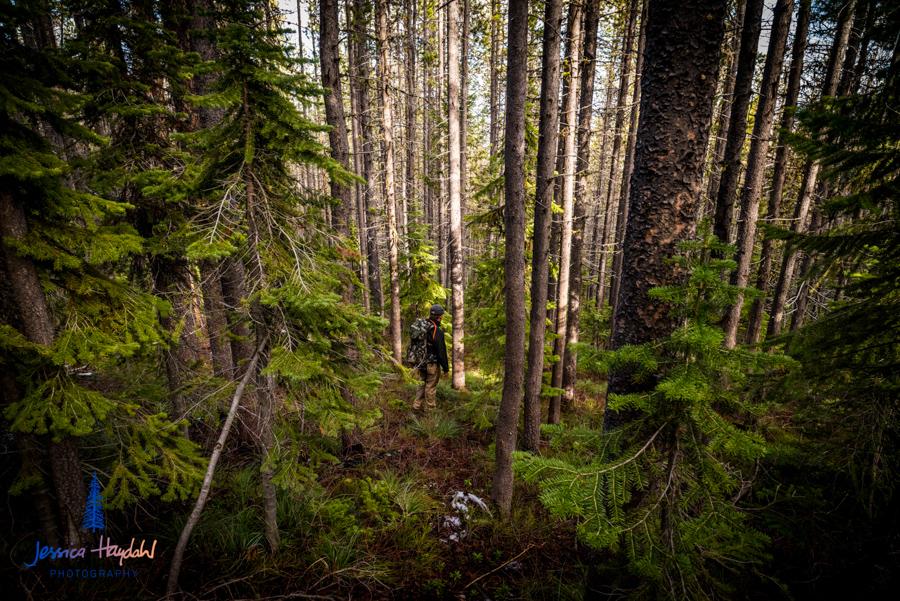 bear_creek_hike_web-7.jpg