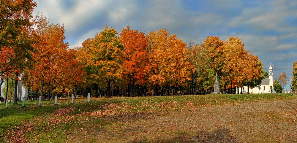 fall pics.jpg