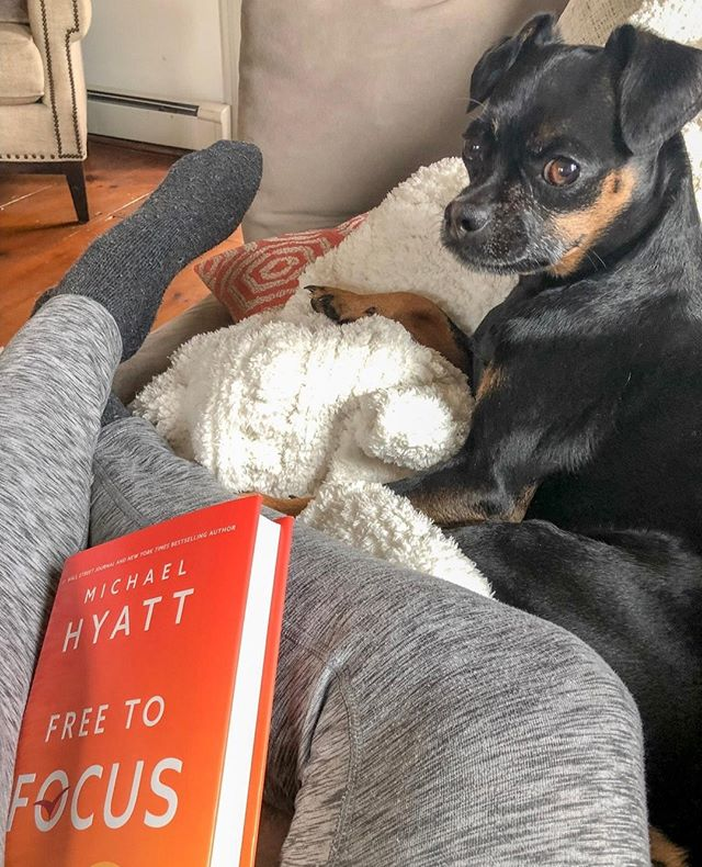 New book and Ollie snuggles = my favorite way to kick off the day! ⁣ ⁣ For those of you out there looking for ways to reach your full potential and be your very best in life, I have some goodies coming your way soon! ⁣ ⁣ For now, I want to share some of my favorite must-read books for capitalizing on your skills, strengths, talents, and full potential in life🤓 ⁣ ⁣ Each of these books has helped me rise to higher levels in life and I'm so excited to share them with you! They're on the blog today -  click on #linkinbio then this photo to scoop them up! ENJOY!