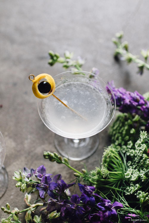 gin_aviation-4.jpg